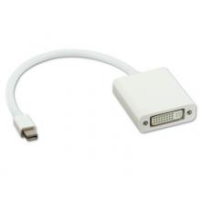 MINI displaypoort naar DVI kabel adapter 1080P Mac / HaverCo
